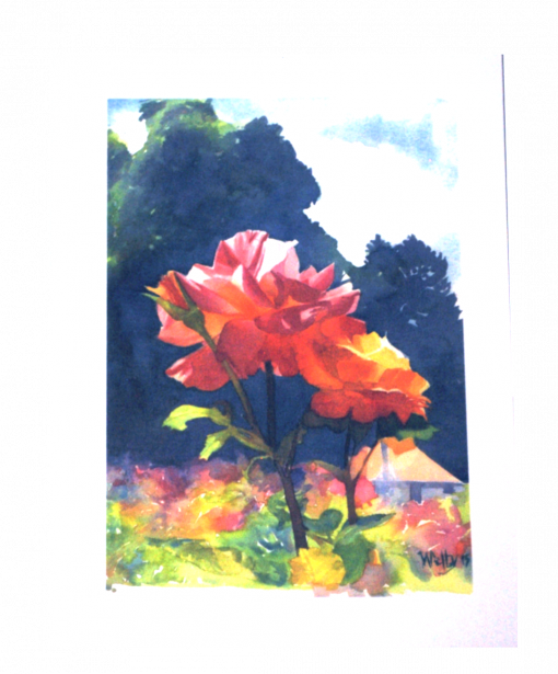 Don Welty Watercolor Rose Card