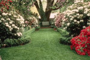Gaiety Hollow gardens, Salem, OR